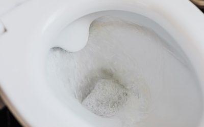 Does Your Toilet Make Noise Randomly? Phantom Flushing is the Culprit